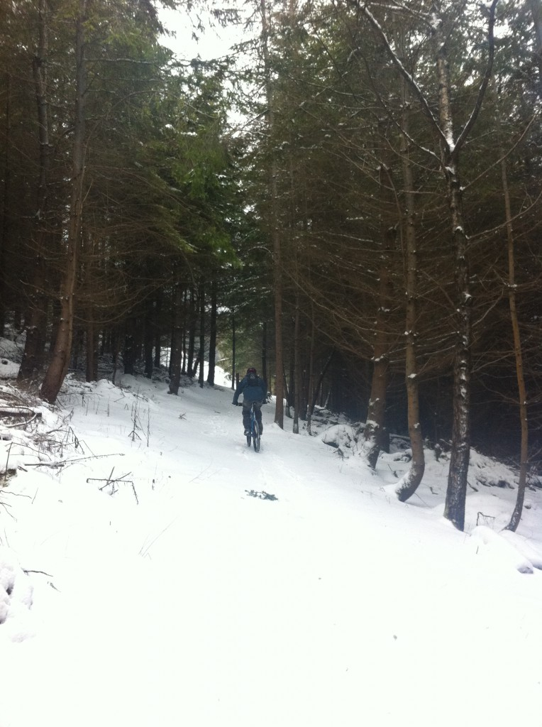 Dan climbs through the forest